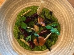 Parsley Risotto with salsify and wild mushrooms